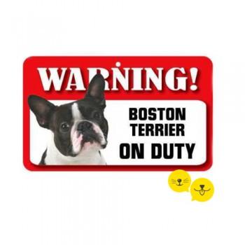 Boston Terrier Var !