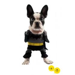Hero Kostüm