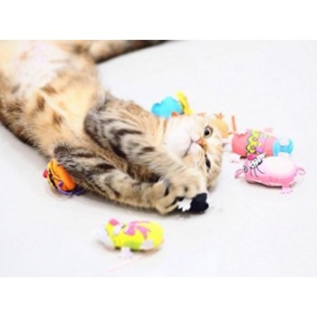 Crazy Mouse Kedi Oyuncağı  - Standart Karakter