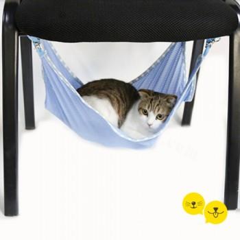 Mavi Kedi Salıncağı