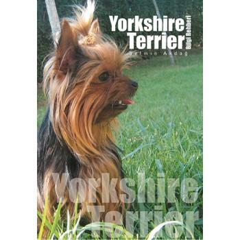 Yorkshire Terrier Bilgi Rehberi